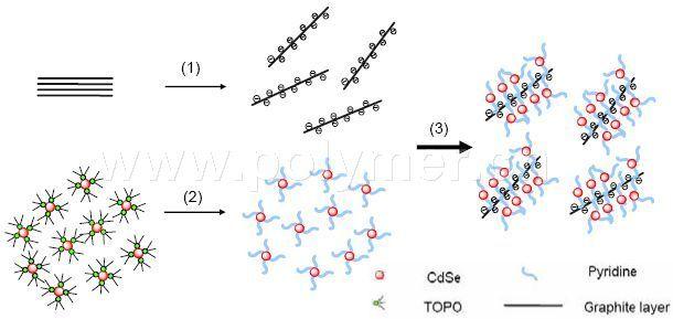 低维碳纳米材料的发现或合成,重新引起了人们对碳材料的巨大研究兴趣,加快了纳米材料和技术的发展。自2004年英国Manchester大学A.K.Geim组用力学剥离方法制备出石墨烯(Graphene)材料后,Graphene优异性能被陆续揭示,成为目前室温导电速度最快、力学强度最大、导热能力最强的材料,有望在纳电子学、能源、环境、生物医学等领域得到应用。然而,由于特殊的零带隙线性能带色散关系,Graphene在紫外到近红外光学吸收范围内呈现带间吸收主导的恒定的光电导现象,无共振吸收峰,在光电转化中的性能应用