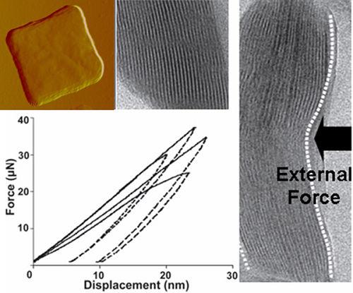 该仿生骨能够在保持晶体结构完整性的