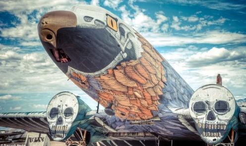 """油漆涂鸦让废弃飞机重新焕发""""生机"""""""
