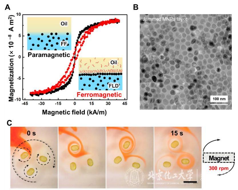 北京化工大学《Science》:可重构的铁磁性
