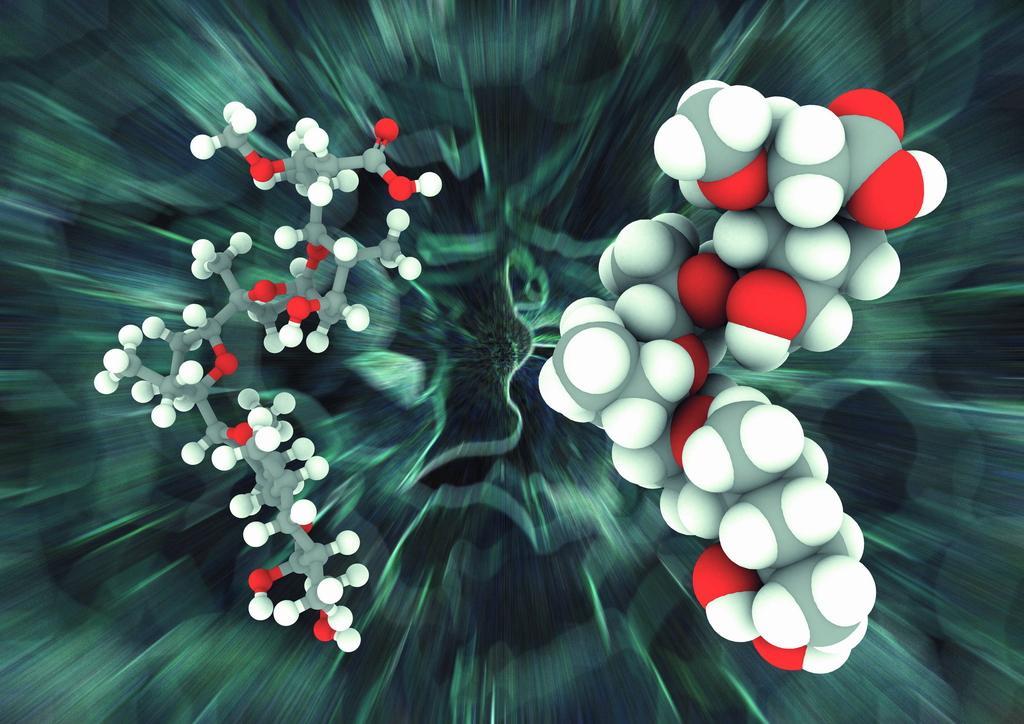 多项高分子材料类项目入选2015年国家科技奖推荐名单