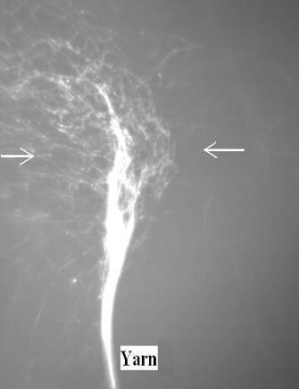 高速相机拍摄正/负电荷纳米纤维空