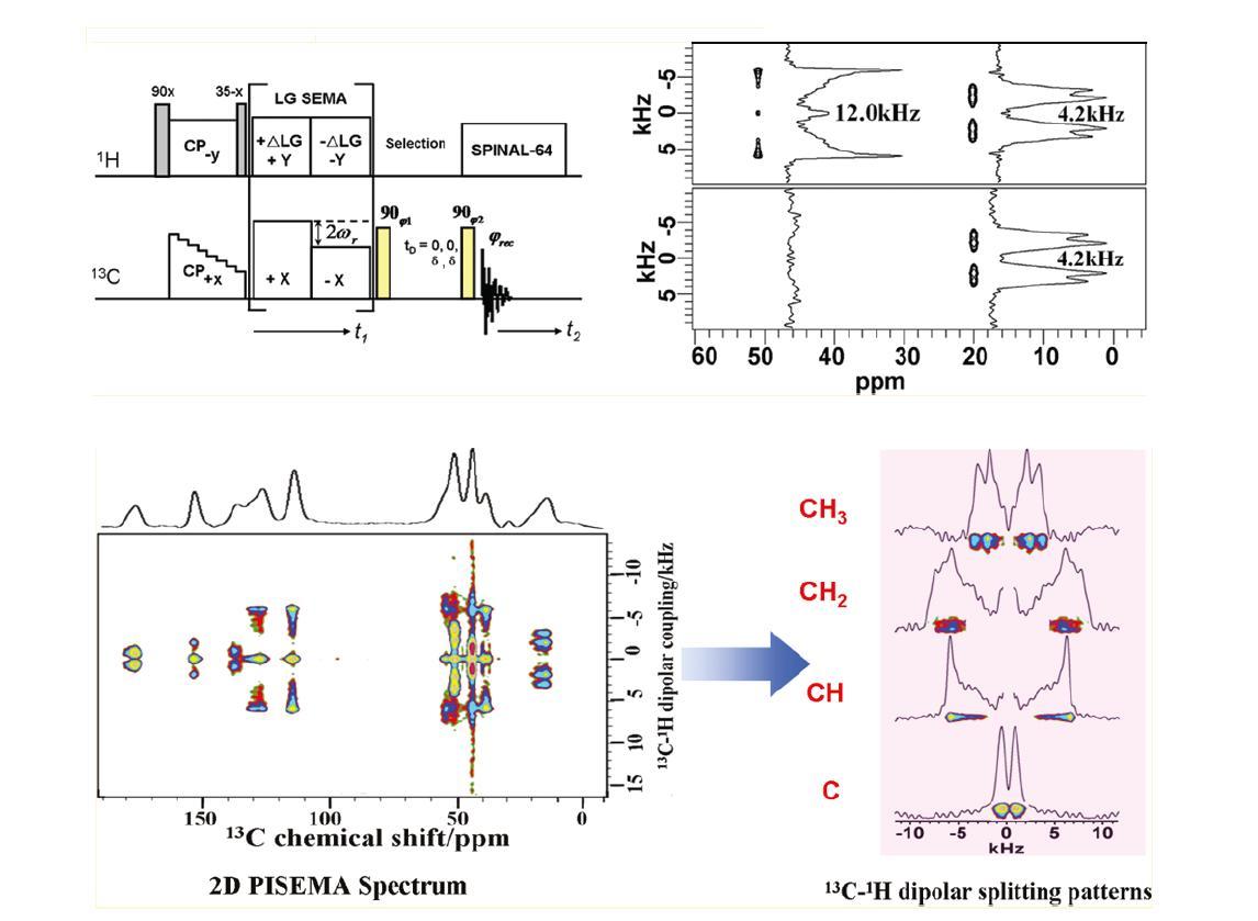 二维 rt-pisema新脉冲技术,它可有效分离并检测不同运动特性化学基团