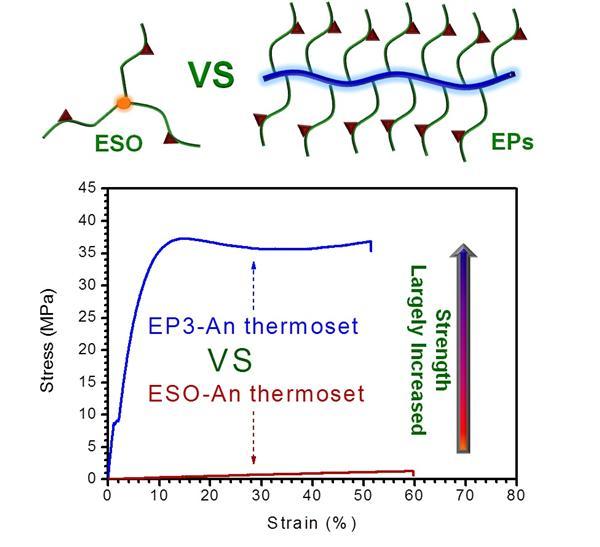 关于高性能植物油环氧树脂论文在Ma
