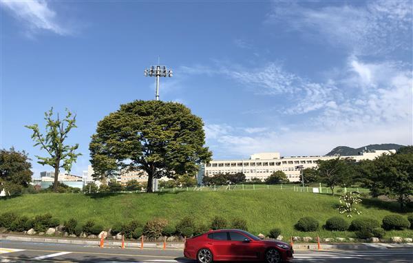 又到一年赴韩时——韩国首尔大学学