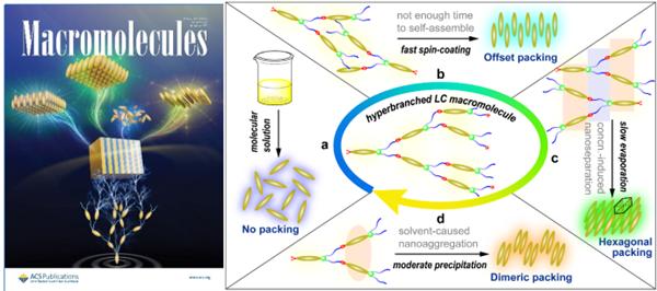 课题组关于超支化液晶聚合物的研究